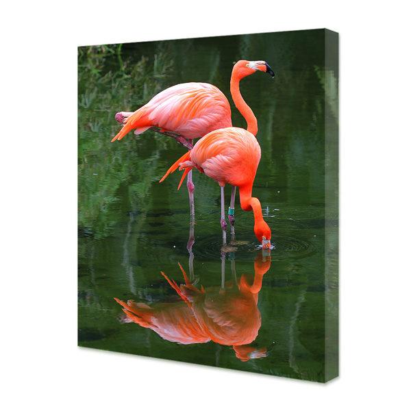 Obraz na płótnie pionowy flamingi w wodzie
