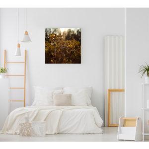 Obraz na płótnie dzika róża w jesiennym słońcu wizualizacja