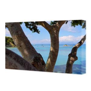 Obraz na płótnie widok przez drzewa na morze Jońskie plaża Notos – poziom