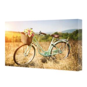 Obraz na płótnie rower z koszem kwiatów na łące