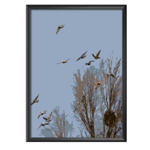 Plakat gołębie w locie
