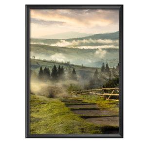 Plakat łąki we mgle o wschodzie słońca