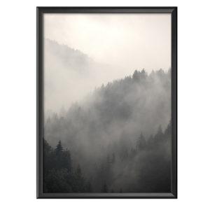 Plakat mgła pokrywająca górskie lasy