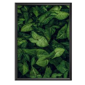 Plakat zielone liście